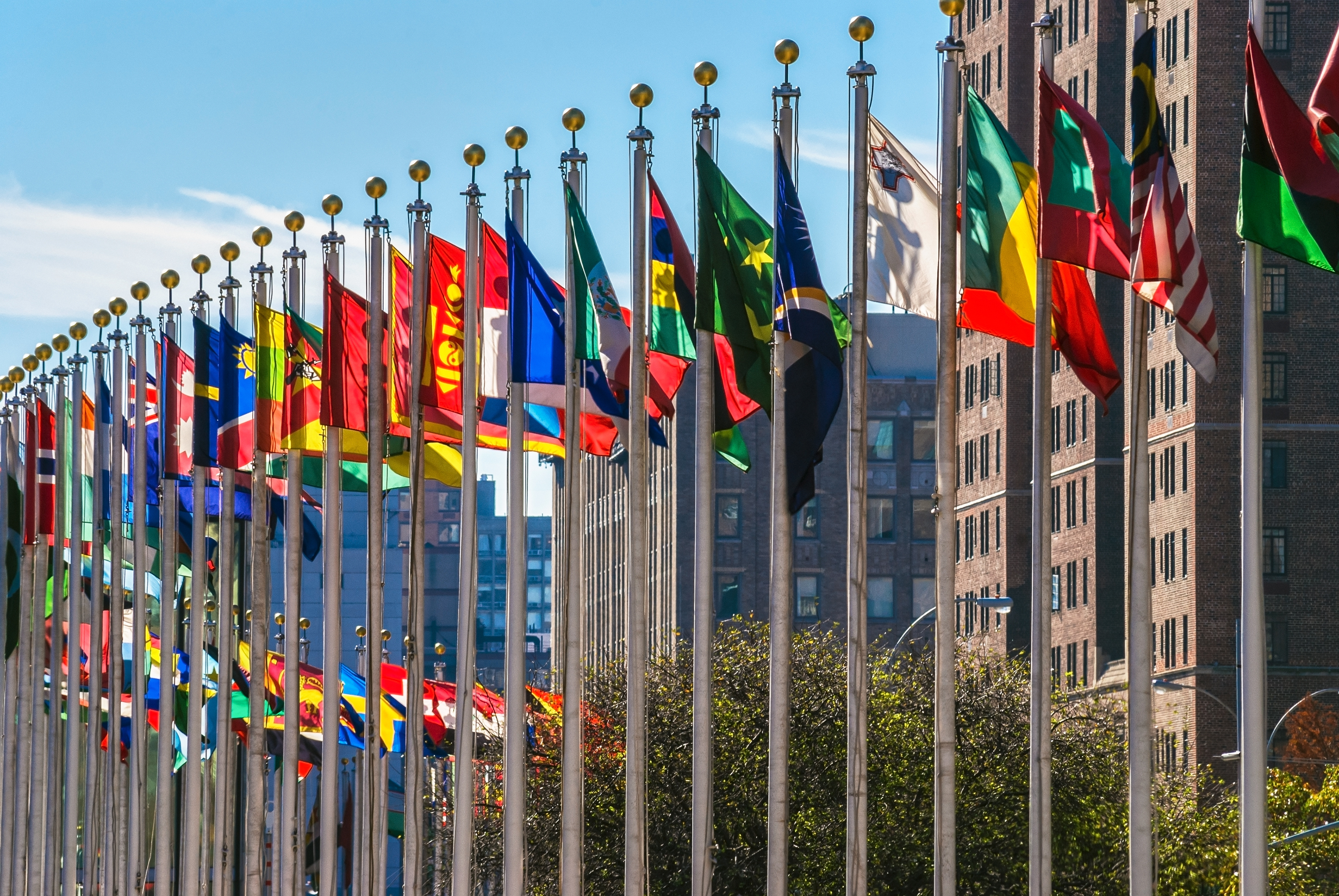 Flags of the UN