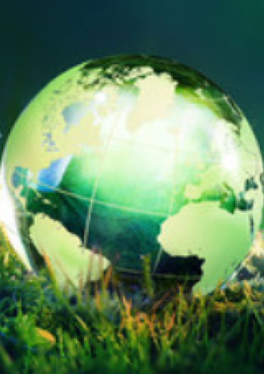 an image of a green globe